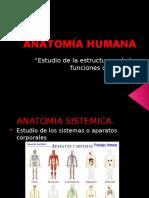 4 Anatomía Humana