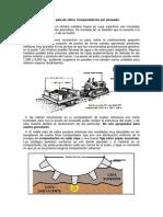 RODILLO PATA DE CABRA