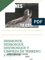 CLASE DE DESMONTE, DESBOSQUE Y LIMPIEZA 2015