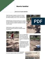 Huerta familiar maestra pricila (2)