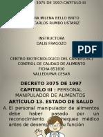 diapositivas exposicion DECRETO 3075 juank (1).pptx