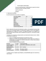 Caso proyecto carteras.docx
