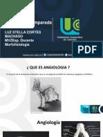 ANGIOLOGIA.pdf