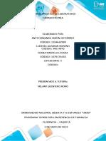 INFORME FARMACOTECNIA GRUPAL.docx