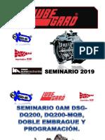 SEMINARIO 0AM DSG - DQ200