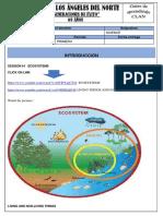 522_science 4to.pdf