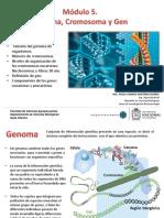 Módulo 5. GENOMA cromosoma y gen.pdf