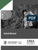 salud mental sin marcas.pdf