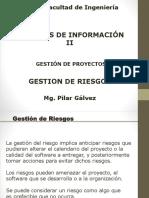 SII-GESTION DE RIESGOS- 2020