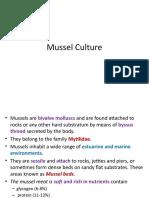 Mussel Culture