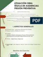 PRISION-PREVENTIVA-MICHAEL-REMIGIO.pdf