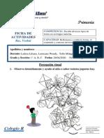 fPERCEPCION VISUAL.pdf