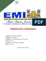 TRINIDAD DE LO IMPOSIBLE macro.pdf