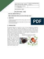 Guia de Laboratorio No. 4- Disección virtual del ojo de una vaca.docx