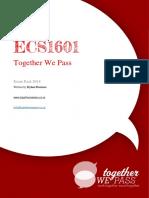 ECS1601 Exam Pack