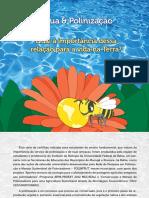 agua_polinizacao.pdf