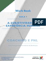 1ª Aula - Workbook.pdf