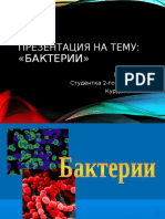 бактерии Курдова Татьяна
