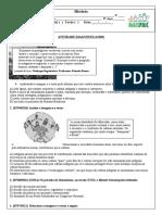 Diagnóstica - 9º ano-HIST.docx