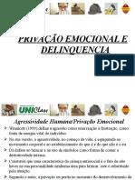 Privação Emocional e Delinquencia.ppt