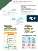 (Katerina)   Determ+Indeter.pdf