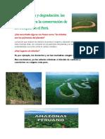 Deforestación y degradación - las amenazas para la conservación de los bosques en el Perú