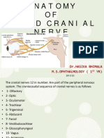 anatomyof3rdcranialnerve24-3-13-130402123812-phpapp02.pdf