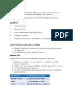 trabajo_grupal_de_primeros_auxilios