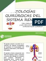 PATOLOGIA QX SISTEMA RENAL (1)