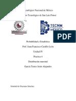 JAGT_P4_U4_PyE.pdf