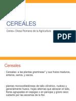 CEREALES 2020.pdf