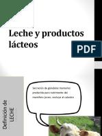LECHE Y PRODUCTOS LACTEOS 2020.pdf