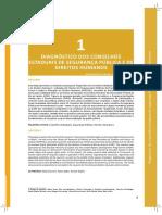 1-diagnostico-dos-conselhos-estaduais-de-seguranca-publica-e-direitos-humanos-3