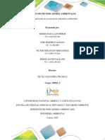 Fase 4 - Aplicación de un sistema de indicadores ambientales - Grupo 5