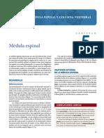 03-Medula-Espinal-1.pdf