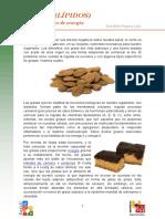 grasa.pdf