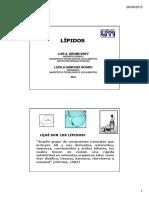 Lipidos2015.pdf