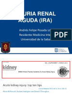 injuriarenalaguda-120918023845-phpapp01