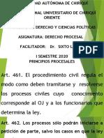 Principios procesales Der 303 A.pptx