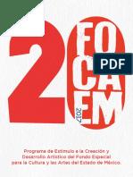 FOCAEM - 18 x 21,59 cm.pdf