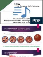EMBRIOLOGIA - Primeras Semanas.pptx