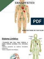 - SISTEMA LINFÁTICO(Rogério Natal).pdf