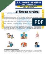 6 Ficha-Que-es-el-Sistema-Nervioso-para-Sexto-de-Primaria-convertido