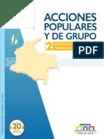 Vol2_ACCIONES_POPULARES_GRUPO.pdf