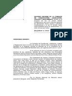 RPA 2019 Nov 2o. Informe Comision de  Constitucion del SENADO