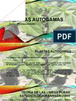 Plantas autogamas