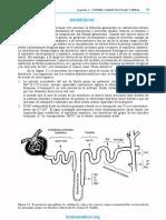 DIURETICOS-ISAZA_OCR.pdf
