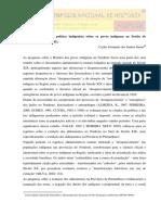 A Historiografia e a política indigenista sobre os povos indígenas no Sertão de Pernambuco (1801-1845).