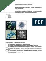 MICROORGANISMOS_CAUSANTES_DE_INFECCIONES.docx