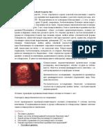 Zadacha._dlya_ekzamena_5_kursa.pdf